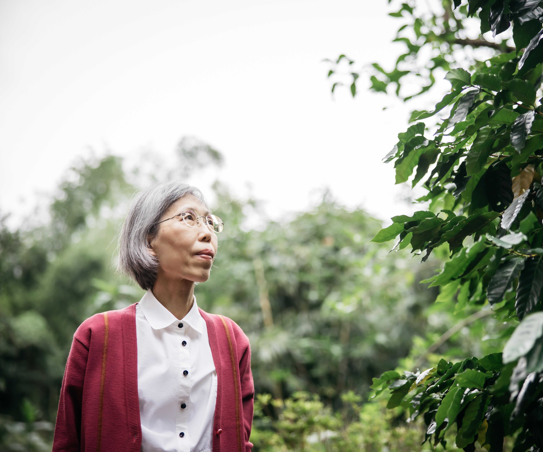 劉淑範 Shwu-Fann Liou